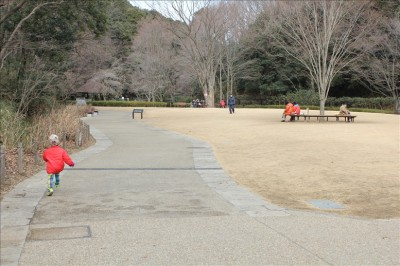 ケヤキ広場の様子