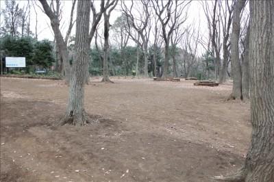 ピクニック広場の様子