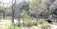 オカピゾーン-金沢動物園