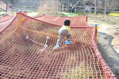 ネットアスレチックを登る息子3歳