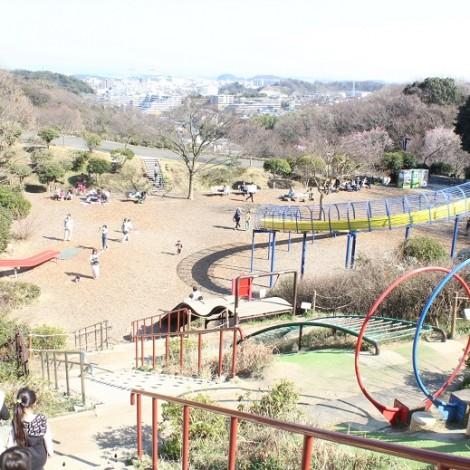 金沢自然公園遊具広場を上から撮った写真