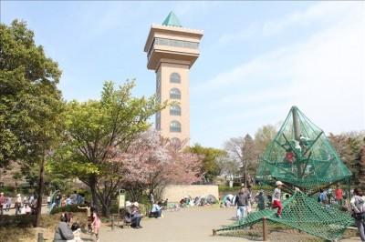展望デッキがあるグリーンタワー