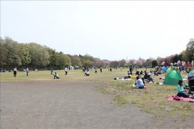 大きな芝生の広場で家族が賑わう様子