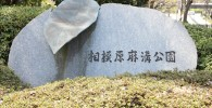 相模原麻溝公園と書かれている石