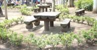 樹林広場のテーブルと椅子の写真