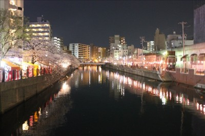 大岡川と夜の桜とネオン