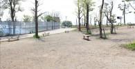 みどりの遊び場ベンチと広場