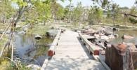 日本庭園の木造の橋