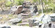 帰真園(日本庭園)の石段