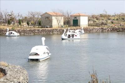 広い池を足こぎで進むボート