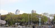 催し物広場のグランド