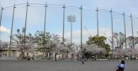 催し物広場から見える野球場