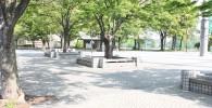 野球場前の広場の樹林とベンチ