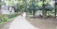 【四季園】四季園の中を歩く3歳児