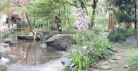 四季園には浅瀬の池があります。
