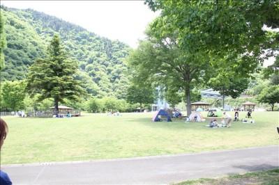 木陰の多い芝生広場