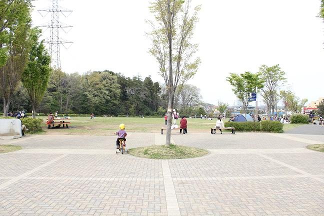 玄海田公園広場の様子