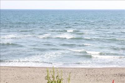 サーファーもたくさんいる柳島海岸