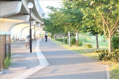 湘南夢わくわくパーク遊歩道