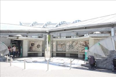 多摩動物公園の昆虫園の建物