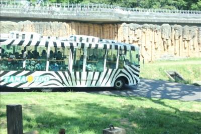 走行中のライオンバス