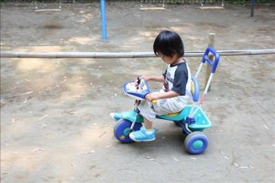 無料レンタルの三輪車で遊ぶペン太