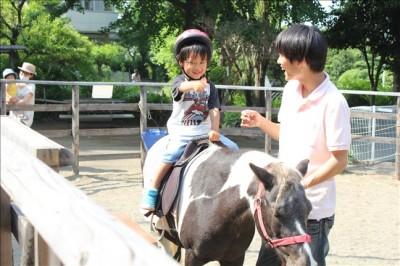こどもの杜のポニーに乗る3歳の息子