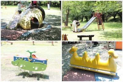 平塚総合公園の桜の広場にある遊具