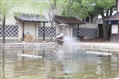 映画村の池から顔を覗かせる恐竜