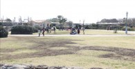レストラン前に広がる芝生の広場とファミリーが遊ぶ様子