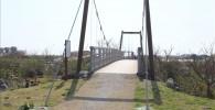 チューチュートレインから撮影したつり橋
