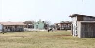 広大な面積の乗馬場の様子