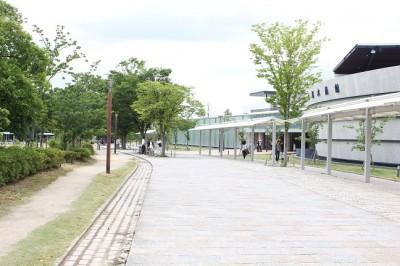 梅小路公園京都水族館前の遊歩道
