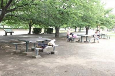 遊具広場後ろのテーブルとベンチ
