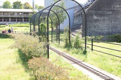 栗山近隣公園のトンネル