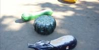 キュウリやカボチャなどの形の遊具