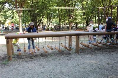 丸太のグラグラ橋に挑戦する3歳児