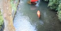小さな池と池の真ん中の赤いオブジェ