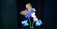 鮮やかに写る蝶々