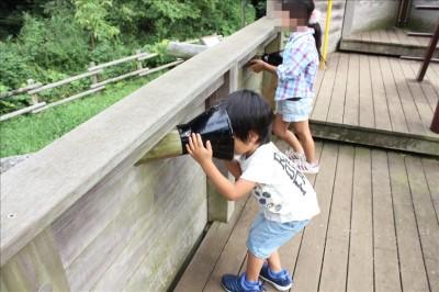 大砲に頭を突っ込む3歳児