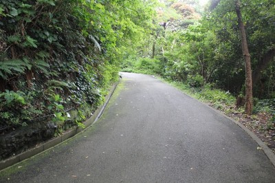 遊具のある広場へ向かう途中の山道