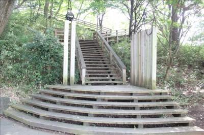 ハイキングコースの木造の階段
