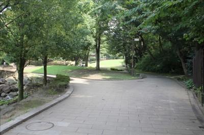 王禅寺ふるさと公園遊歩道