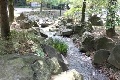 山から流れる小川