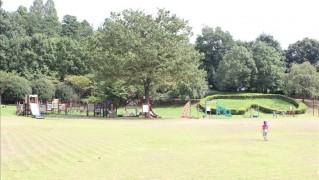 芝生の広場と奥に見える遊具