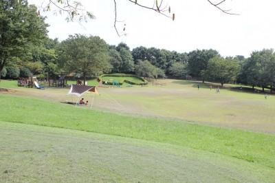 芝生広場の坂になっている場所