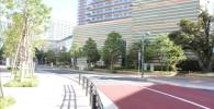 グランツリーから東急武蔵小杉駅に通じる道路