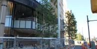グランドオープン前のまだ工事中のグランツリー前の歩道の様子と建物