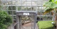 大温室の出口