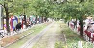 ミニ鉄道の遊具広場横を走る線路